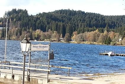 Schwarzwald Mit Hund Ferienhaus Oder Ferienwohnung Auch Eingezaunt Oder Auf Dem Bauernhof Und Am See
